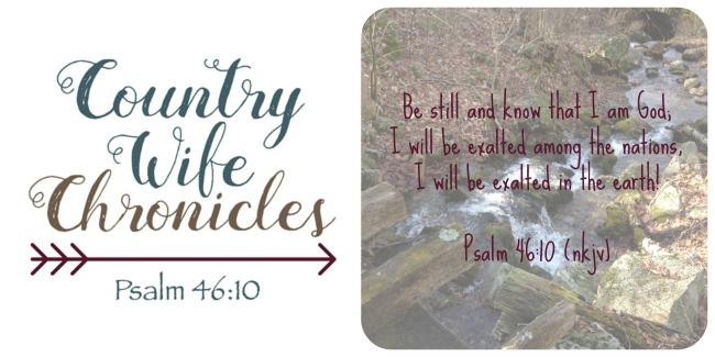 Be Still Full Verse