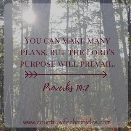 Proverbs 19:2