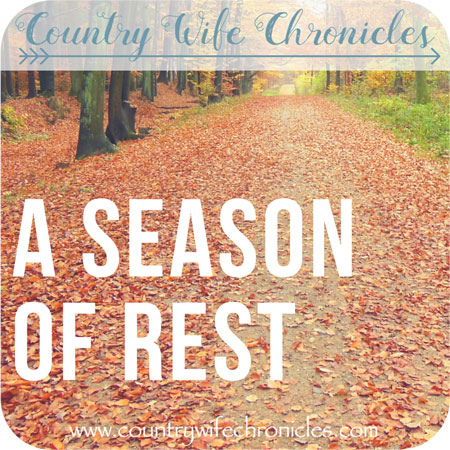 A Season of Rest Feature Image