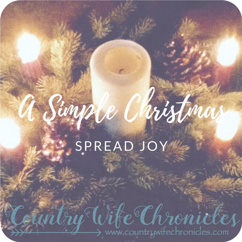 A Simple Christmas Spread Joy Feature Image