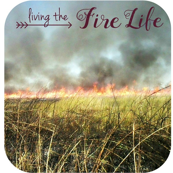 Living the Fire Life Category at the Country Wife Chronicles