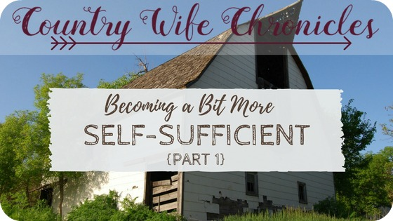 Becoming a Bit More Self-Sufficient {Part 1} Feature Image