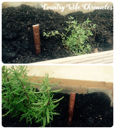 DIY Pallet Planters Herb Markers