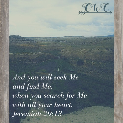 Jeremiah 29:13, Country Wife Chronicles
