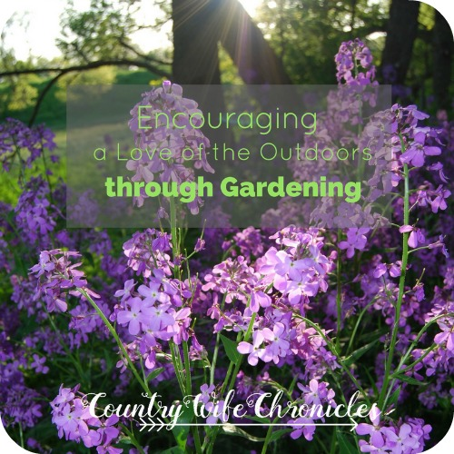 Encouraging a Love of the Outdoors through Gardening Feature Photo