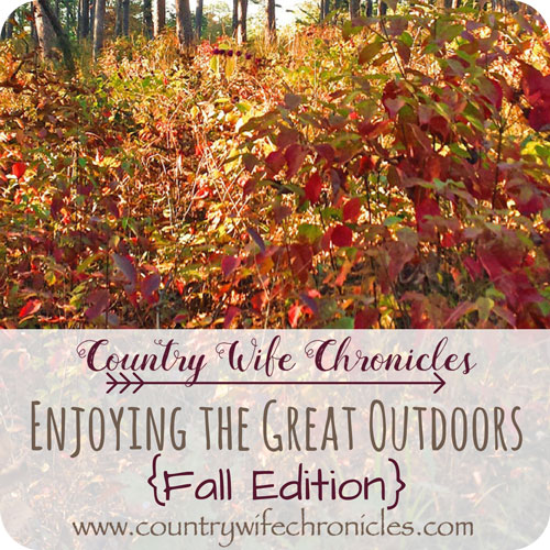Enjoying the Great Outdoors {Fall Edition} Feature Image