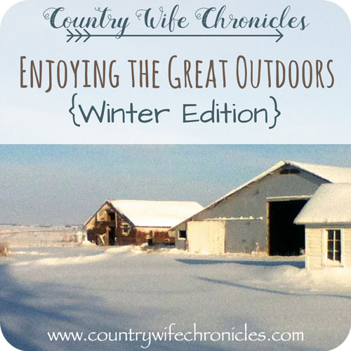 Enjoying the Great Outdoors {Winter Edition} Feature Image