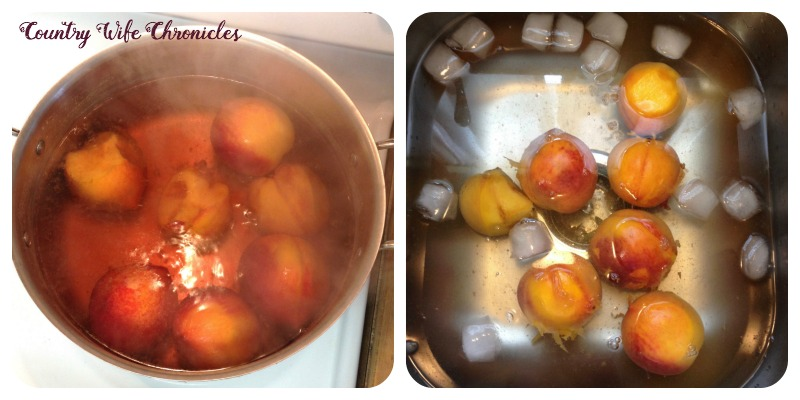 Blanching Peaches and Ice Bath