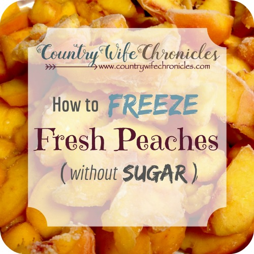 How to Freeze Fresh Peaches (without Sugar) Feature Image
