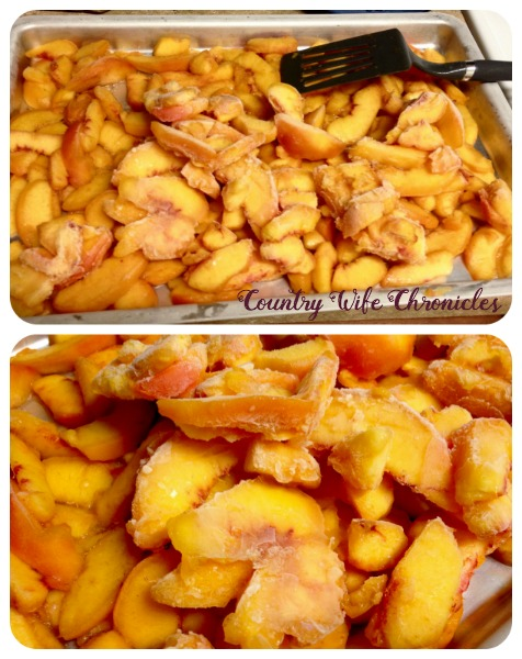 Frozen Peach Slices Collage