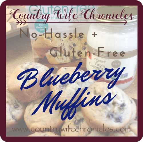 No-Hassle Gluten-Free Blueberry Muffins Feature Image