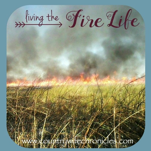 Living the Fire Life with Blue Background Image