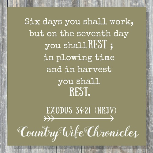 Exodus 34:21