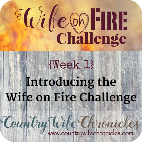 Wife on Fire Challenge Week 1 Feature Image