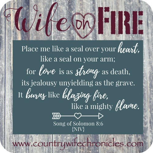 Wife on Fire Challenge Solomon 8:6