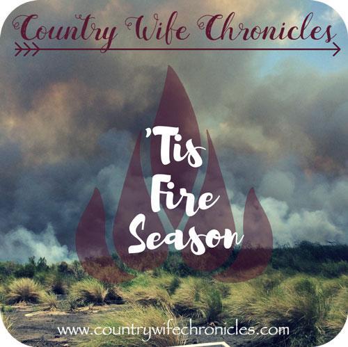 Tis Fire Season Feature Image