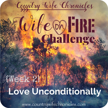 Wife on Fire 2018 {Week 2} Feature Image